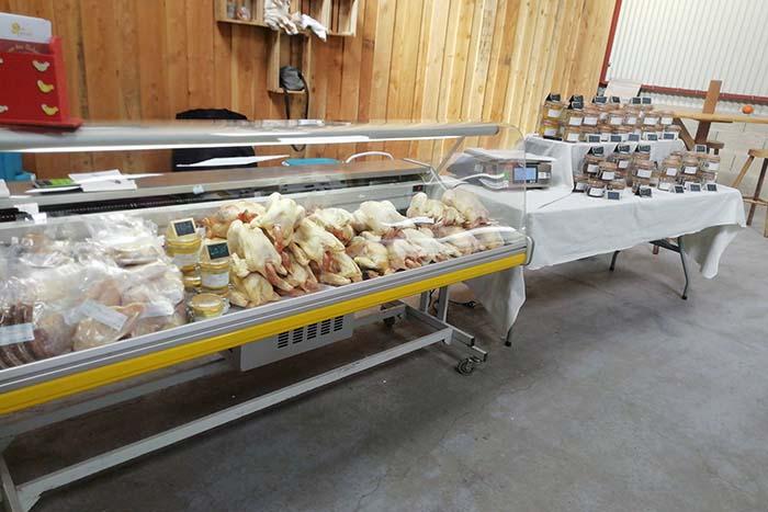 Actualités de la Ferme des Aubépins à Neuillé-Pont-Pierre